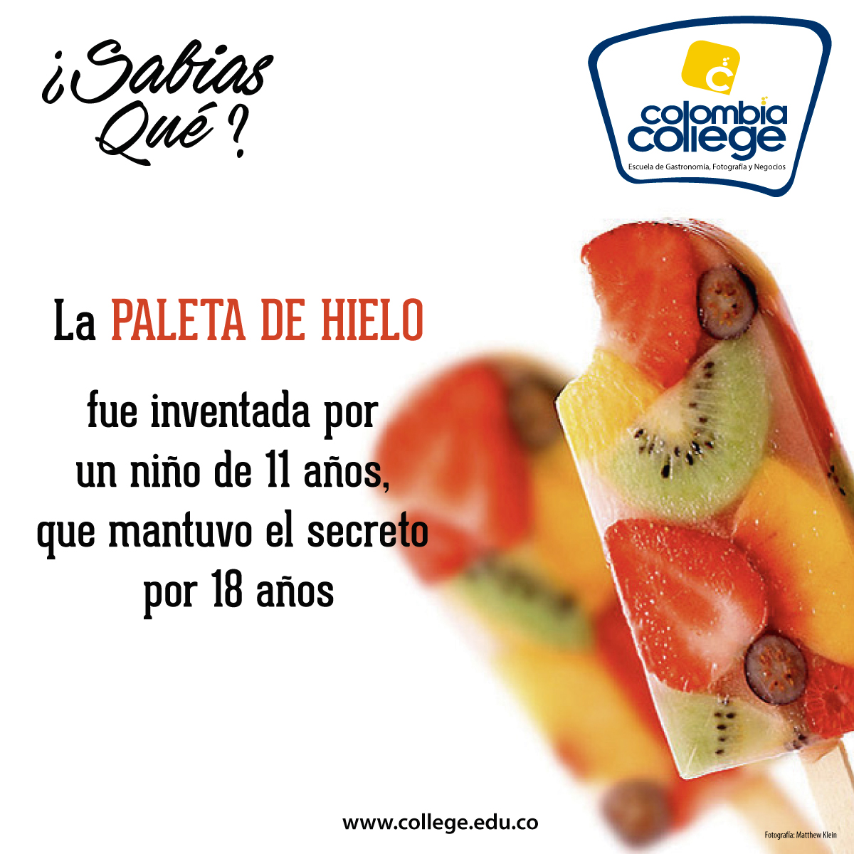 TIP DE COCINA PALETA